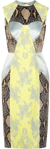 Erdem Brynn python-print satin and lace dress