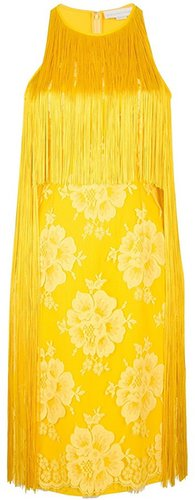 Stella Mccartney Embroidered fringe dress
