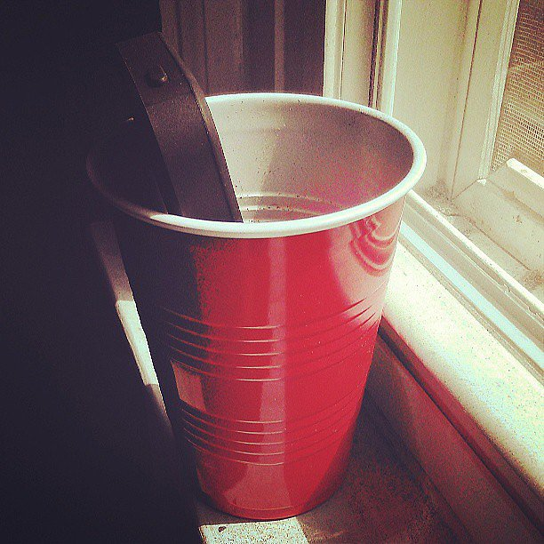 Bump Music Out of a Cup