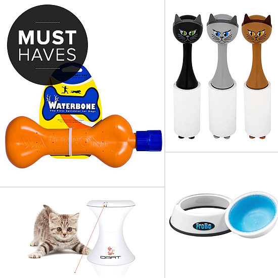 Keep Pets Cool With August's Must Haves
