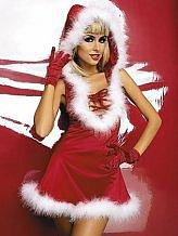 3 Piece Elegant Santa Lady costume