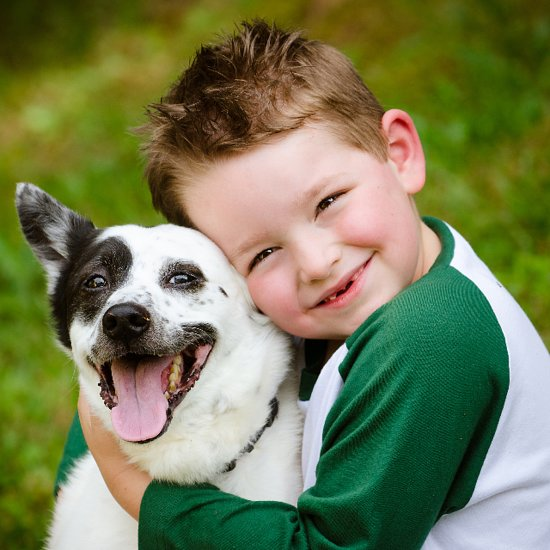 Best Pets For Toddlers and Preschoolers