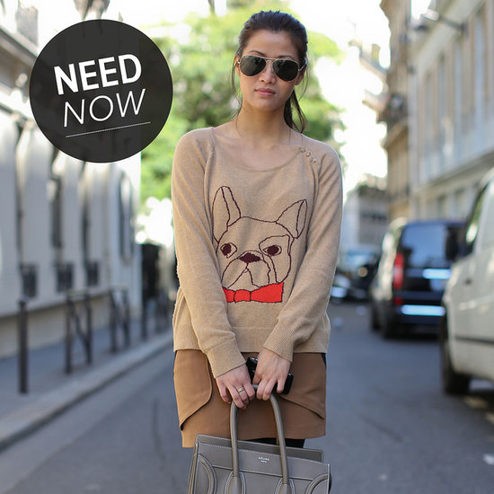 Find Your Spirit Animal (Sweater) For Fall