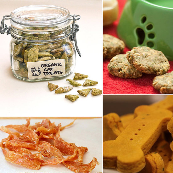 17 Pet-Friendly Recipes For Your Favorite Furry Friend