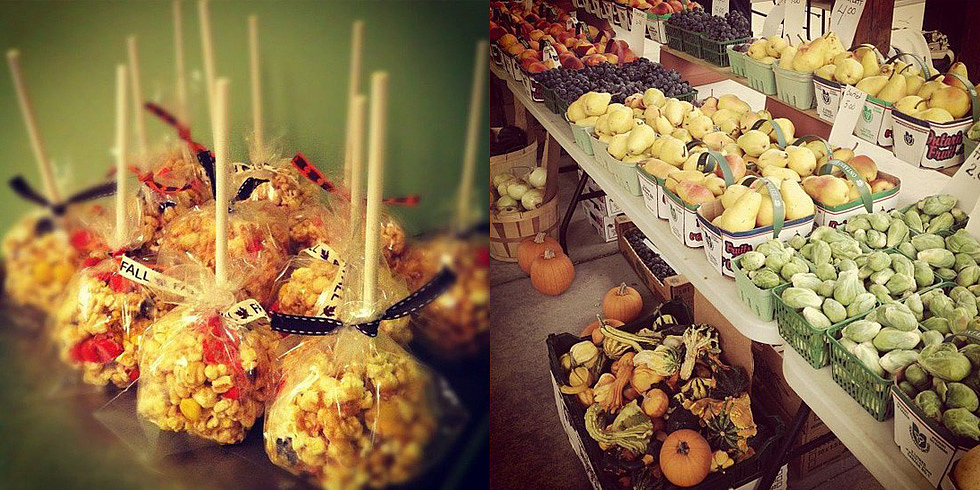 16 Foodie Reasons to Love Fall