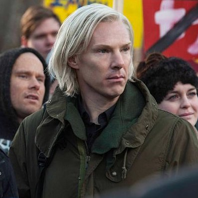 The Fifth Estate Review