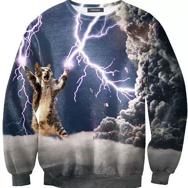 Hilariously Outrageous Cat Sweaters Reach Up And Touch A Dream Guff