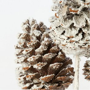 How to Dry Pinecones For Christmas Decorations