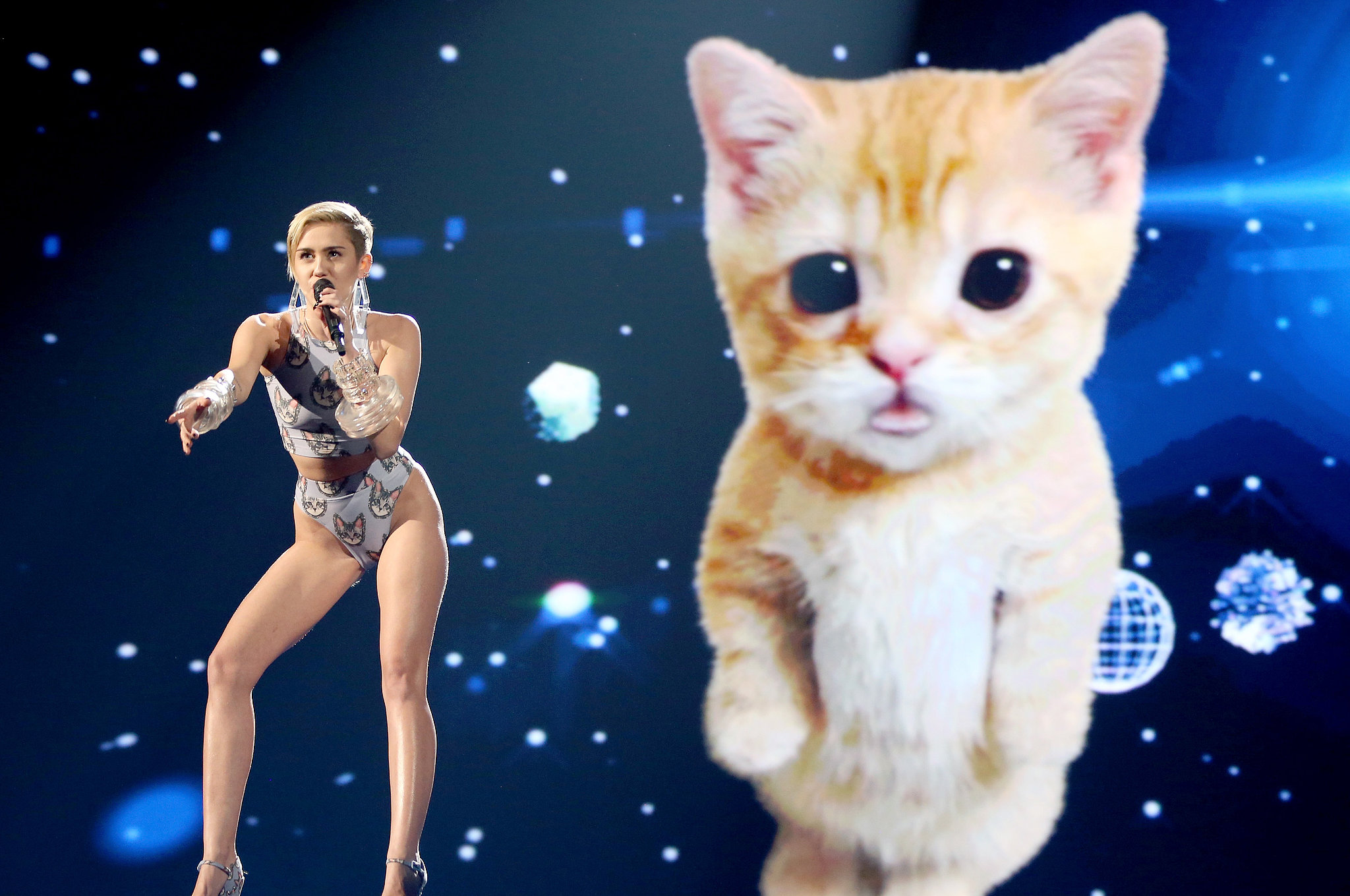 Miley Cyrus managed to top her own antics by performing in front of a giant, lip-syncing digital cat at the AMAs.