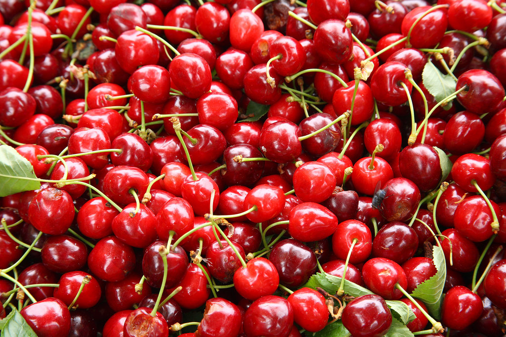 Sour Cherries