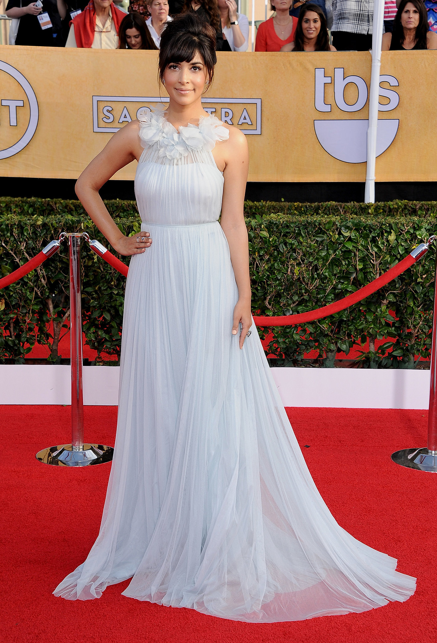 Hannah Simone at the SAG Awards 2014