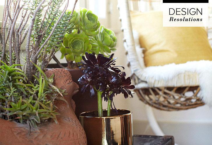 Easy low maintenance houseplants popsugar home for Easy low maintenance plants