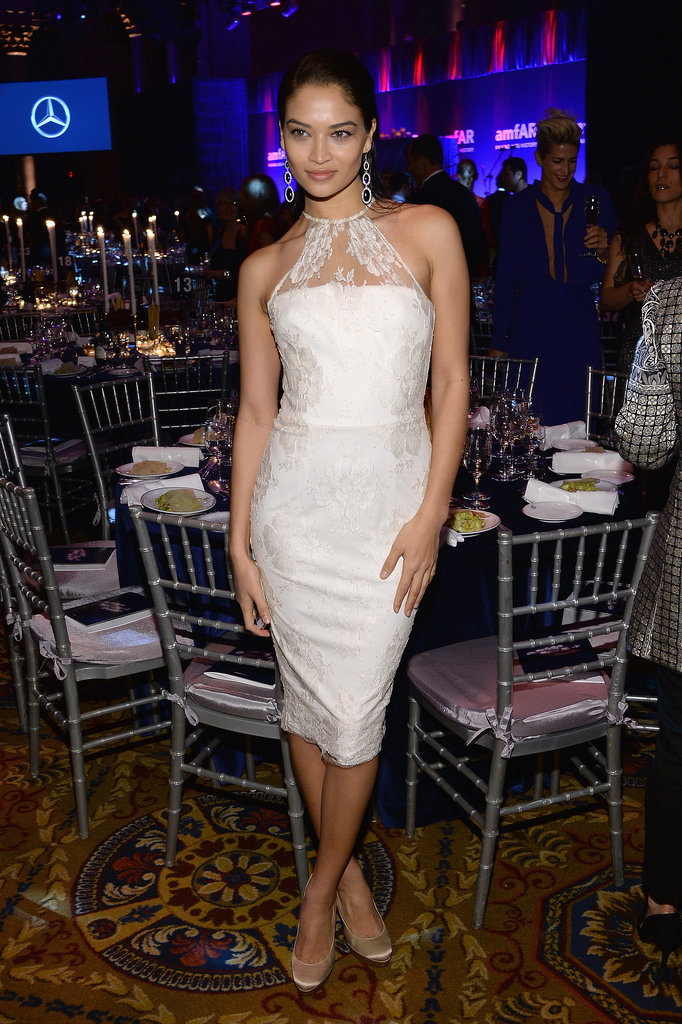 Shanina Shaik at amfAR's New York Gala.