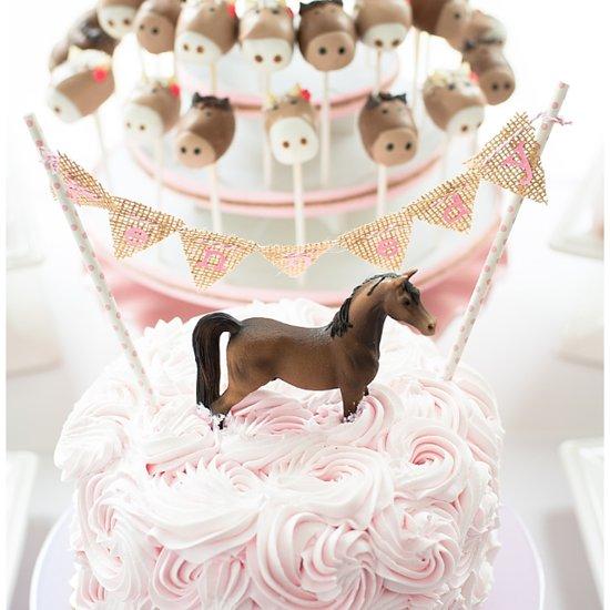 Pony Birthday Party Ideas