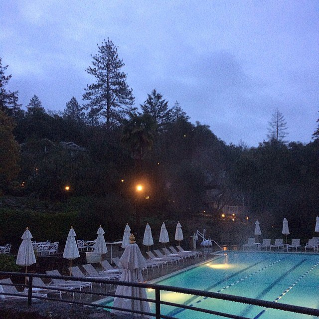 Gucci shared a photo from Meadowood Resort.  Source: Instagram user gucciwestman