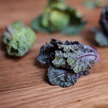 Lollipop Kale Is the Next Big Vegetable