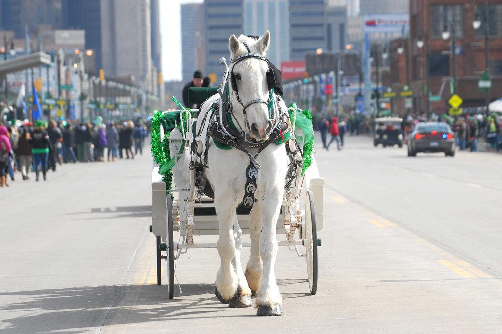 Detroit, MI, got festive with a St. Patrick's Day parade.