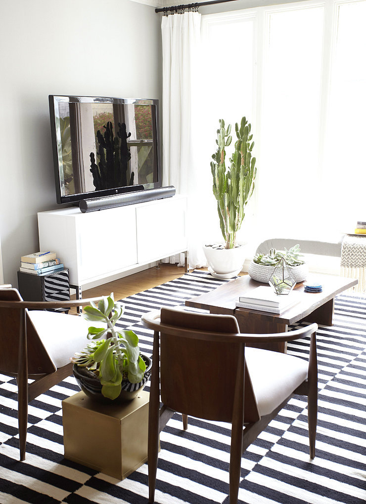 A striped rug pops in the white, sunny living room. The two small chairs (surrounded by plants) offer extra seating without overpowering the space.  Photo by Zeke Ruelas via Homepolish