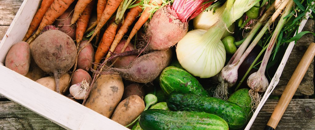 Sow a Vegetable Garden, and Reap Major Rewards