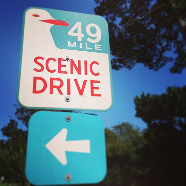 Enjoy the View on the 49-Mile Scenic Drive