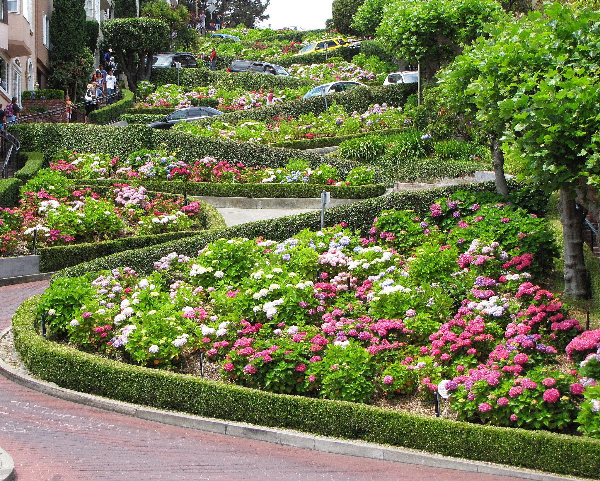Drive Down Lombard Street