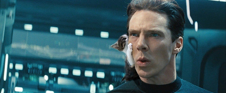 Here Is Benedict Cumberbatch Photoshopped With Cats