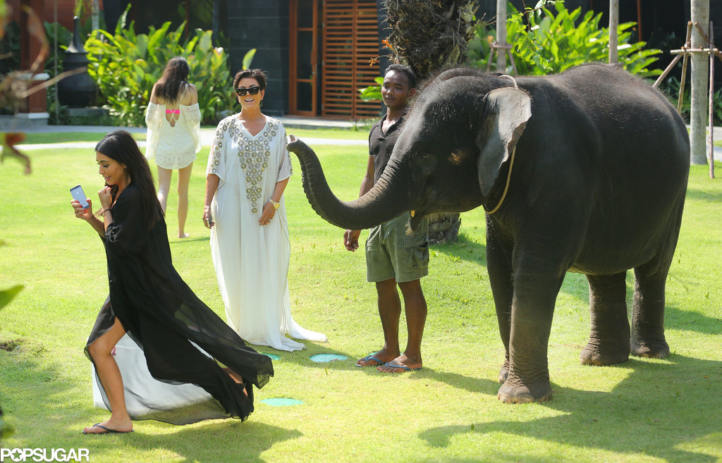 Kim ran away, Kris cracked up, and the elephant and his trainer remained unfazed.