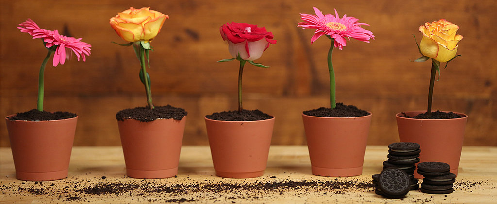 Decorate Your Spring Tablescape With Edible Flower Pots