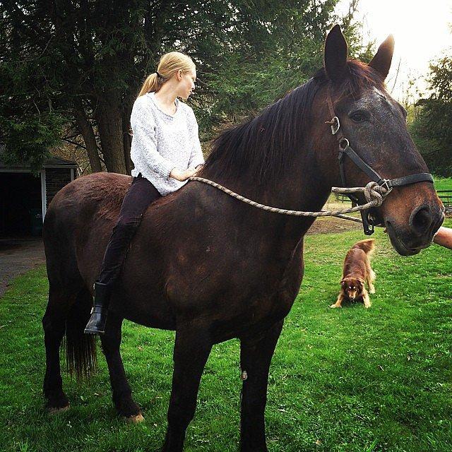 Amanda Seyfried rode a horse — and her dog, Finn, didn't like it. Source: Instagram user mingey