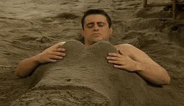 You enjoy a trip to the beach.