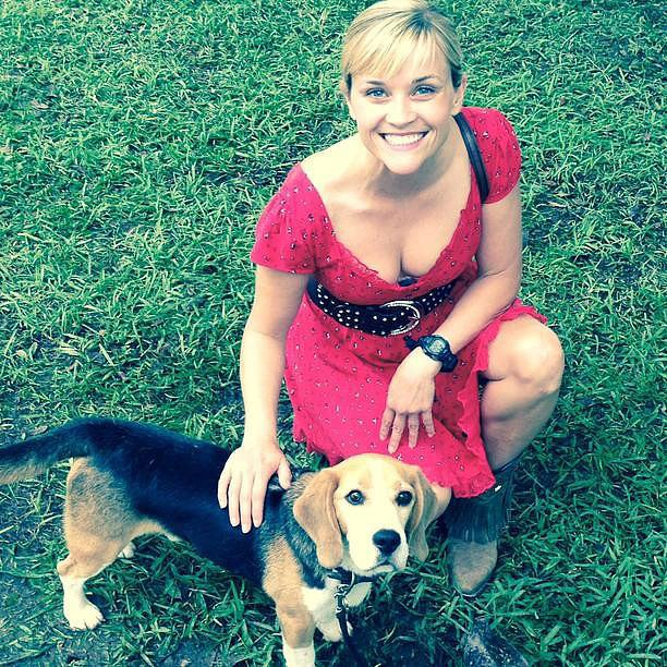 Reese Witherspoon hung out with a dog on set. Source: Instagram user reesewitherspoon