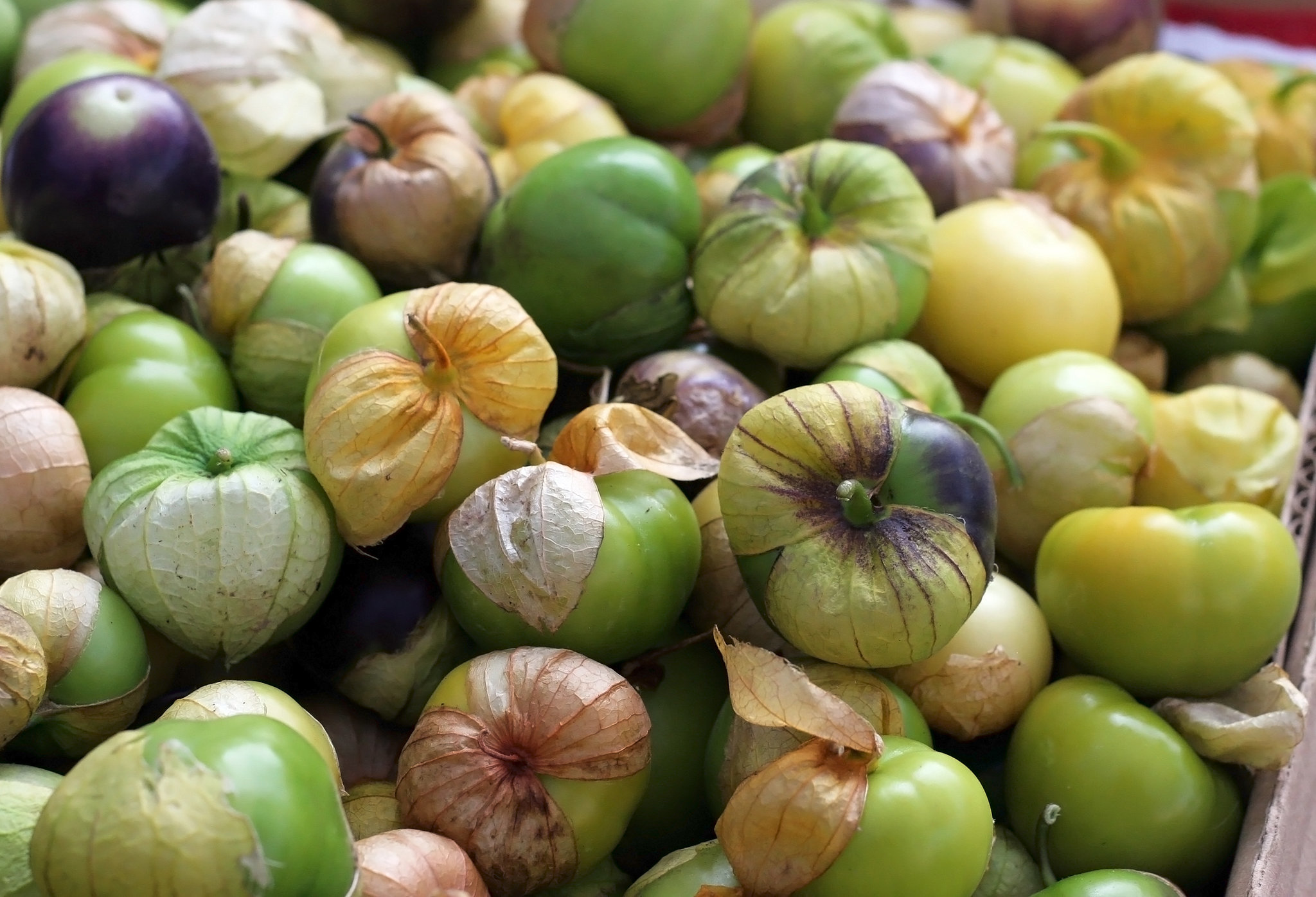 What to Buy: Tomatillos