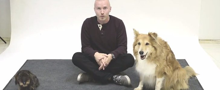 These Dogs React to Human Barking, and It's Hilarious