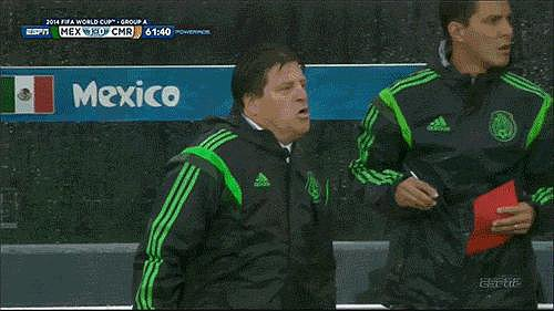 Every One of the Mexico Coach's Reactions