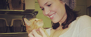 Mandy Moore Might Have the Cutest Cats Ever