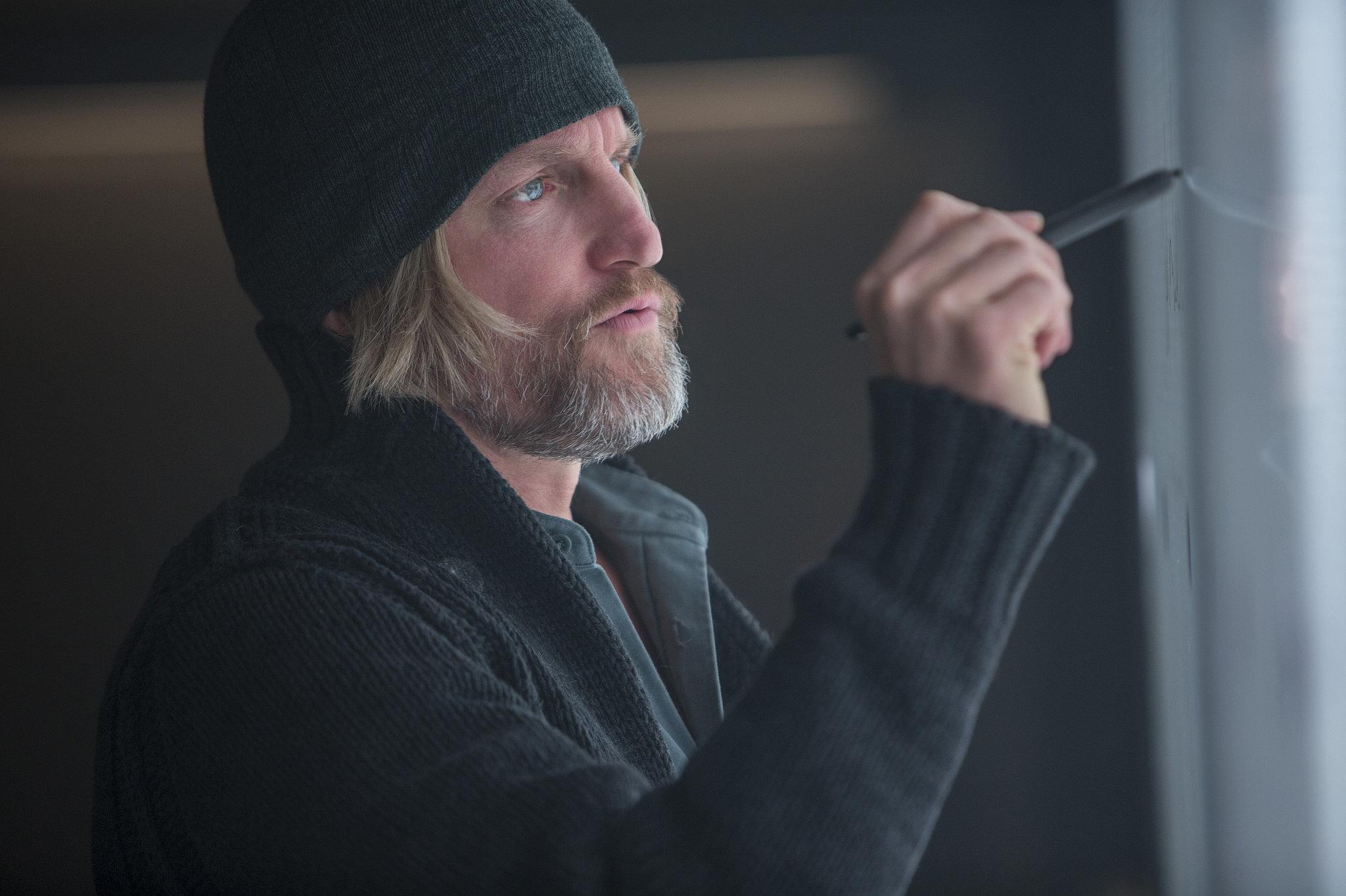 Woody Harrelson as Haymitch Abernathy.