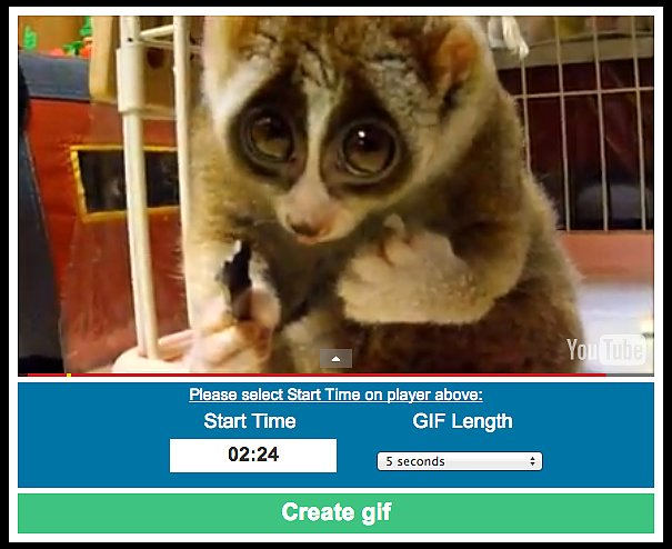 Drag the start button to where you want the GIF to begin and choose the length