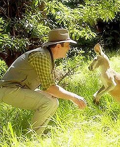 That Time He Got Too Close to a Kangaroo
