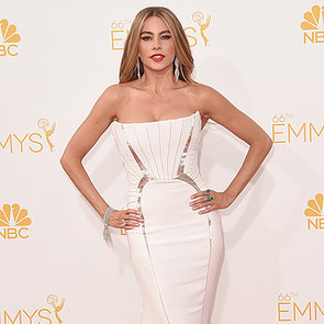 2014 Emmy Awards Red Carpet Celebrity Pictures