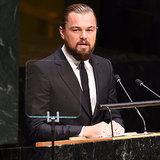 Leonardo DiCaprio spricht vor den Vereinten Nationen