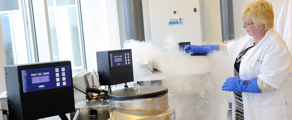 Facebook and Apple Are Paying For Women to Freeze Their Eggs