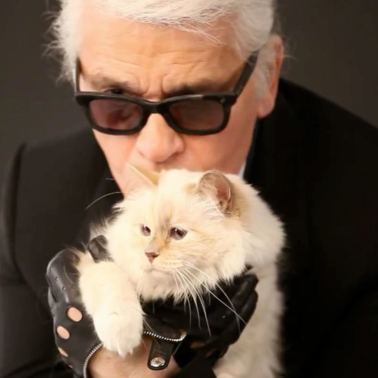 Karl Lagerfeld's Cat Choupette's Makeup Line | Video
