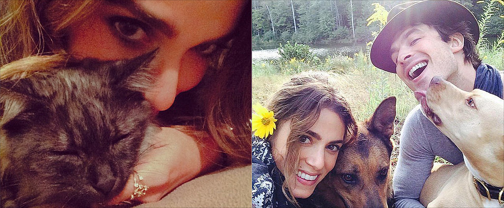 Nikki Reed and Her New Furry Friend Will Melt Your Heart