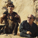 "One Direction Hosts a Circus Party in the Desert For the ""Steal My Girl"" Video"