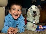 7-Year-Old Boy Battles School District over Service Dog