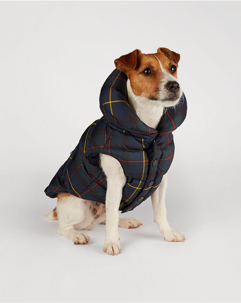 Far more sophisticated than some silly dog sweater, this Ralph Lauren Tartan dog vest ($95) – with its classic print and shawl collar – makes one thing clear: this pup came to play.