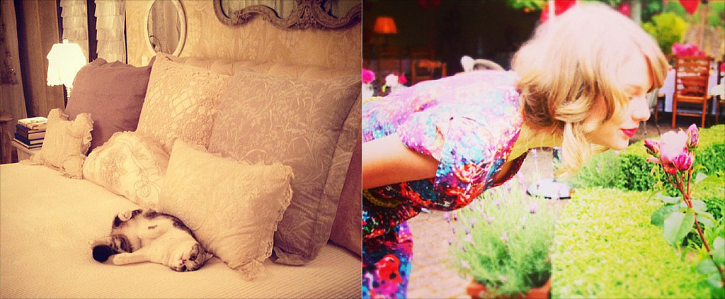 11 Signs Taylor Swift Is a Domestic Goddess