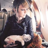 Taylor Swift Proves She's Really Good at Cats
