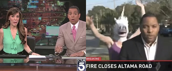 The Year's Best News Bloopers Will Have You Laughing Out Loud