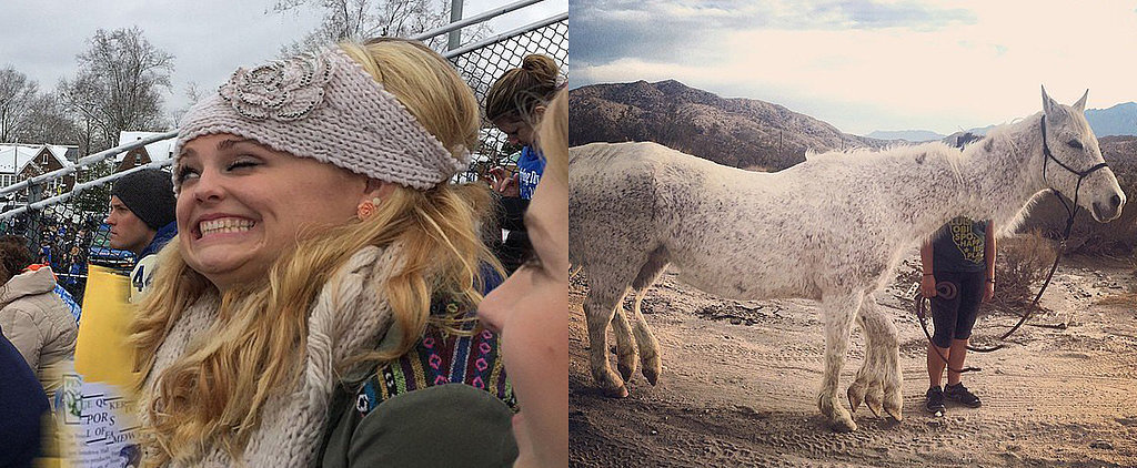 15 Hilarious Panorama Fails Way Better Than Reality